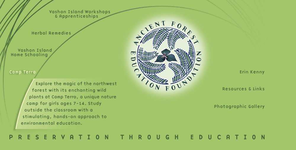 Ancient Forest Education Foundation